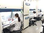 がん研究会と凸版印刷、抗がん剤開発を支援する共同ラボ開設