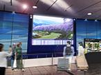 凸版印刷、3空港で先端映像技術を駆使した地域文化資源の魅力発信