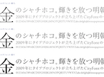 タイププロジェクト、都市フォント「金シャチフォント 姫」発売